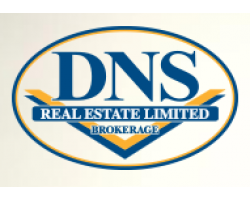 DNS real estate limited logo